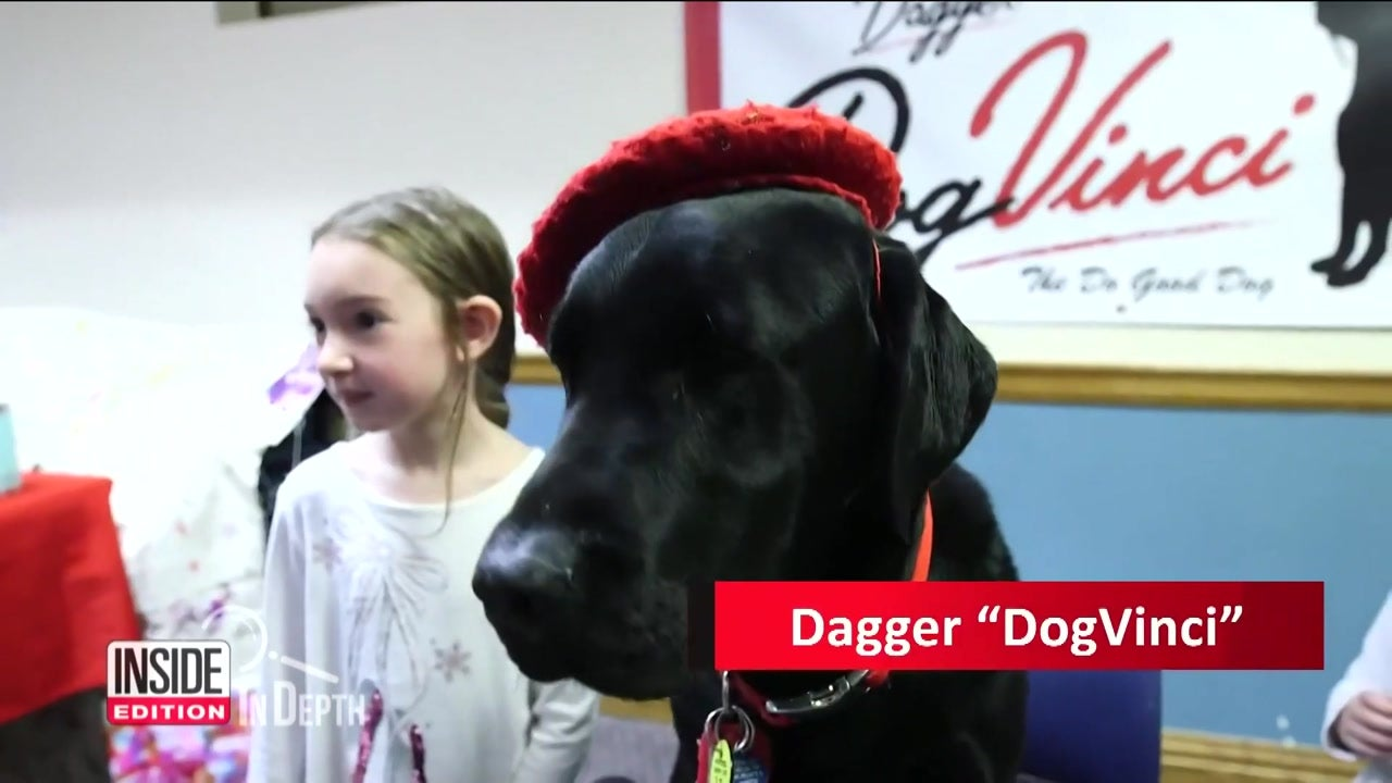 Inside Edition: In Depth - Dog That Failed Service Training Makes $1,000s With Artwork